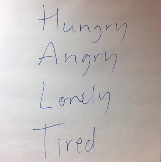 HALT Hungry Angry Lonely Tired